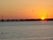 Ellenton, FL