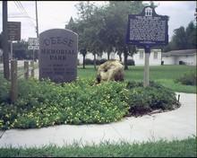 Fort White, FL