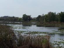 Land O' Lakes, FL